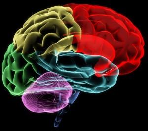 Основные категории для классификации в психиатрии