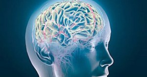 Аноксия мозга