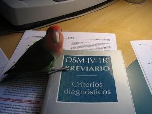 Классификация в DSM и МКБ