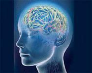 Внимание и концентрация в психопатологии