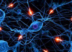 Генерализованная эпилепсия