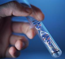 Существует ли ген шизофрении