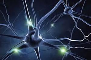 Ген шизофрении: миф или реальность