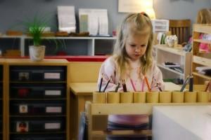 Источники и механизмы развития ребенка