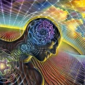 Разум управляет многими процессами в организме человека